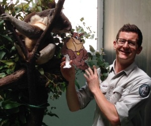 Meet Matt the Ranger at Daisy Hill Koala Centre